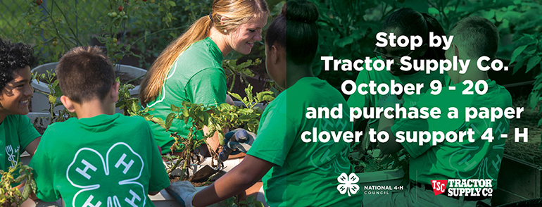 4-H and TSC Paper Clover Campaign photo