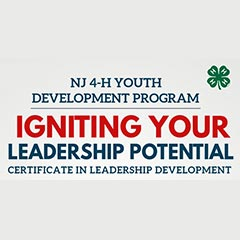 Igniting Your Leadership Potential Certificate in Leadership Development